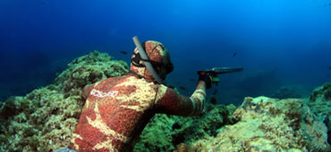 Principali divieti e sanzioni della pesca in apnea